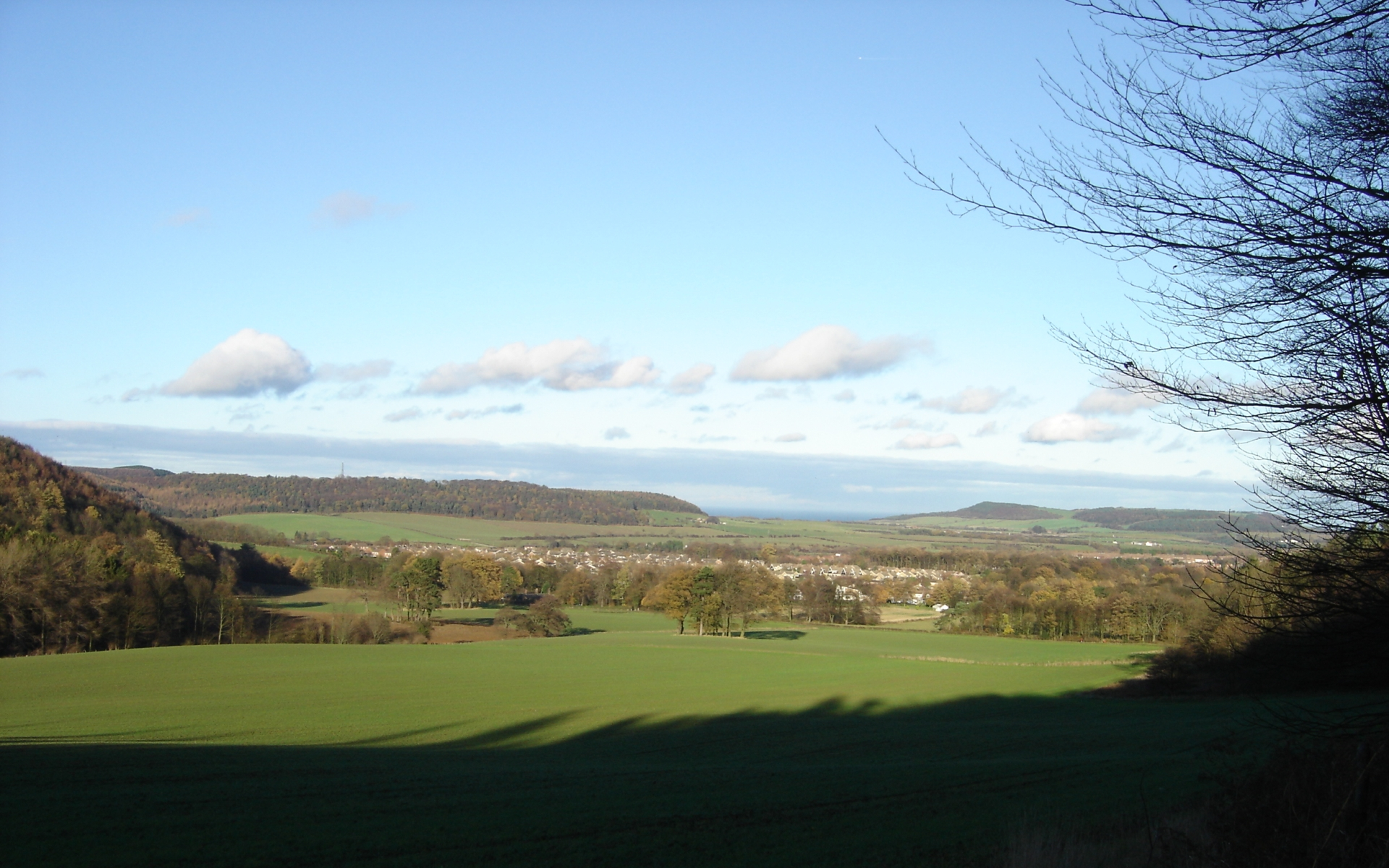 tolon-guisborough-2